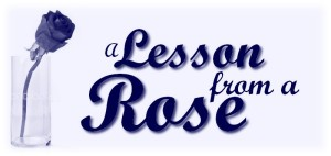 lesson-from-a-rose
